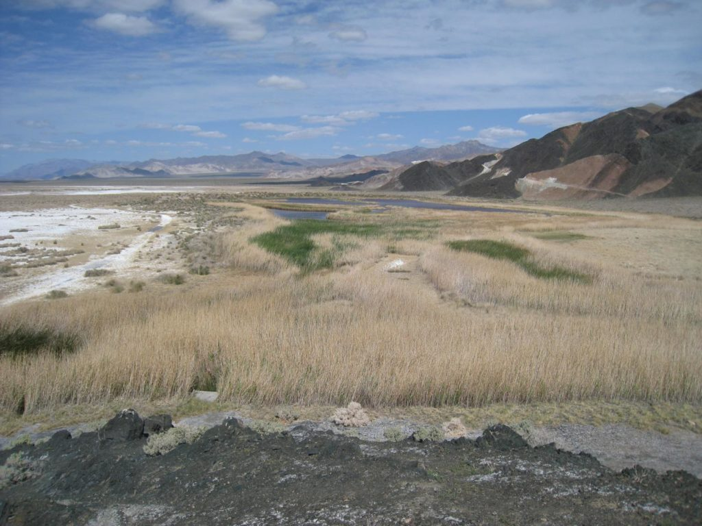 Saratoga Springs At Death Valley National Park